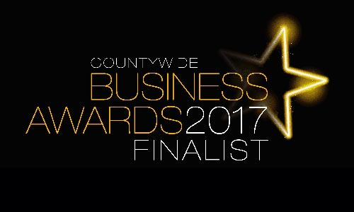 Business awards logo 2017 countywide finalist 789c9996a8220e867bb930ae2a871d62179251b15f0b008b73be5f43a747f1d7